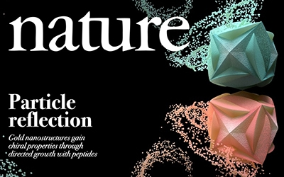 Peptide Induces Chirality Evolution in a Single Gold Nanoparticle